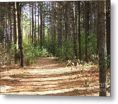 Walking Trail Metal Print by Margaret McDermott