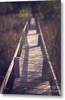 Walkway Through The Reeds Appalachian Trail Metal Print by Edward Fielding
