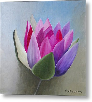 Waterlily Metal Print by Carola Ann-Margret Forsberg