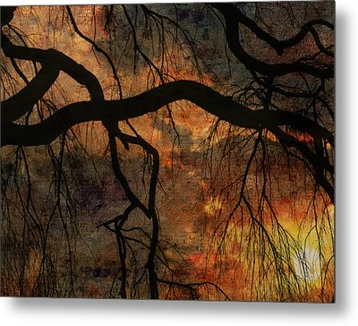 Weeping Willow Sunset Metal Print