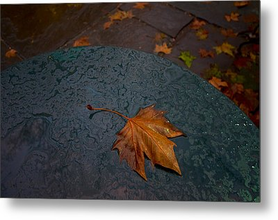 Wet Leaf Metal Print by Mike Horvath