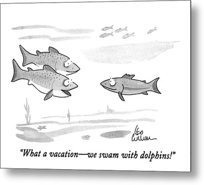 What A Vacation - We Swam With Dolphins! Metal Print