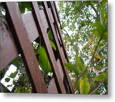 Where The Fence Crosses Metal Print by Jenna Mengersen