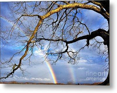 White Oak And Double Rainbow Metal Print by Thomas R Fletcher