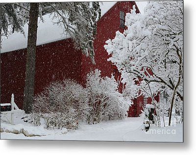 White On Red Metal Print by Paul Noble
