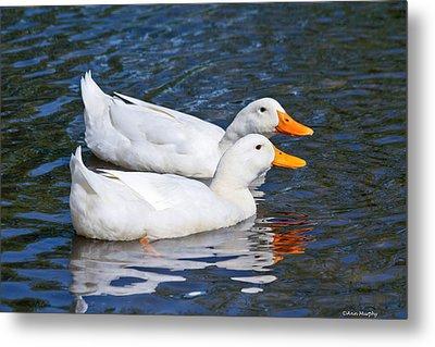 White Pekin Ducks #2 Metal Print by Ann Murphy