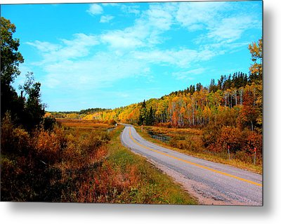 Whiteshell Provincial Park Metal Print by Larry Trupp