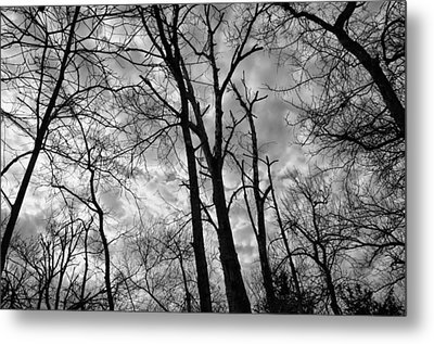 Wicked-spooky Metal Print by Kelly Kitchens