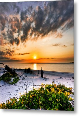 Metal Print featuring the photograph Wild Grape Sunset Orange Sun Beach White Sand Landscape Art by Eszra