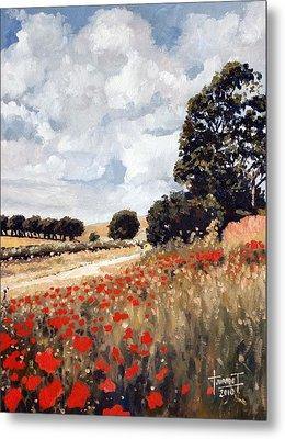 Wild Poppies, Hertfordshire, 2010 Metal Print by Cruz Jurado Traverso