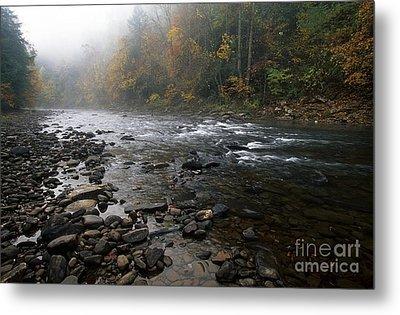 Williams River Autumn Mist Metal Print by Thomas R Fletcher