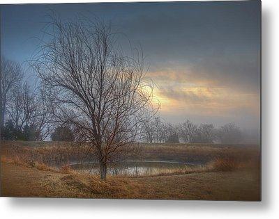 Willow Sunrise Metal Print by Mark Alder