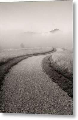 Winding Path And Mist Metal Print by Marilyn Hunt