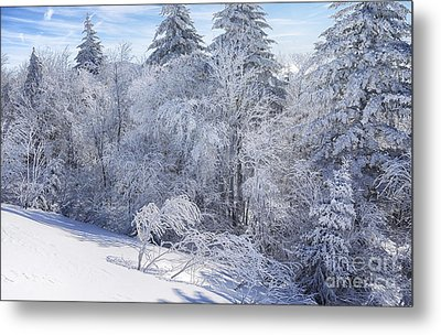 Winter Along The Highland Scenic Highway Metal Print by Thomas R Fletcher