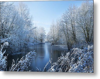 Winter Beauty Metal Print by Svetlana Sewell