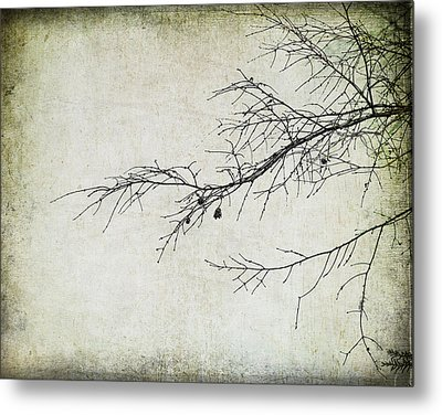Winter Branch Metal Print by Suzanne Barber
