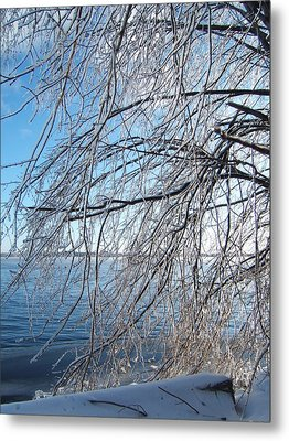 Winter Chill Metal Print by Margaret McDermott