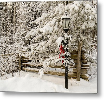 Winter Metal Print by Nick Mares