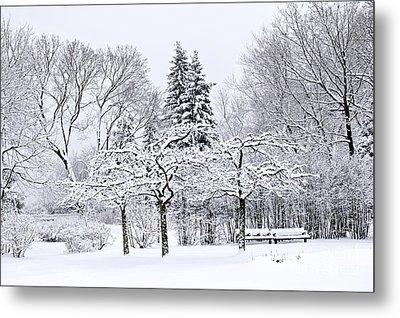 Winter Park Landscape Metal Print by Elena Elisseeva