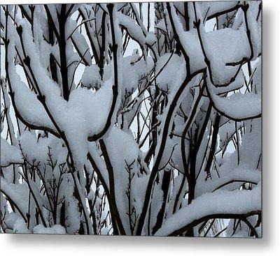 Winter Pattern 1 Metal Print