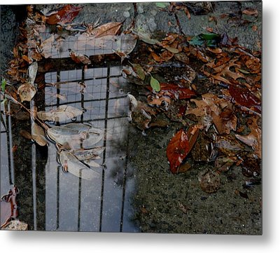 Winter Puddle Metal Print by Maria  Disley