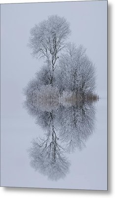 Winter Stillness Metal Print