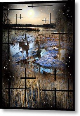 Winter Swamp Evening Metal Print by Andrew Sliwinski