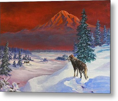 Winter Wolf  Metal Print by Gracia  Molloy
