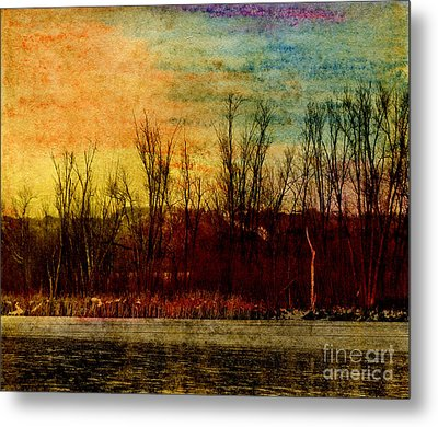 Winter's Shore Metal Print by R Kyllo