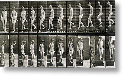 Woman Descending Steps Metal Print by Eadweard Muybridge