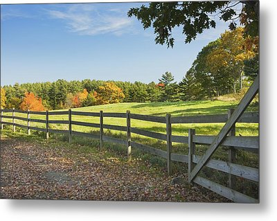 Wooden Fence In Autumn Maine Farm Pasture Metal Print