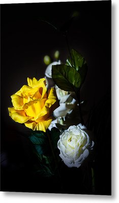 Metal Print featuring the photograph Yellow And White by Cecil Fuselier