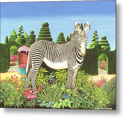 Zebra In A Garden Metal Print
