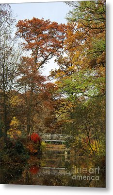 Autumn Forest Metal Print by Angela Doelling AD DESIGN Photo and PhotoArt