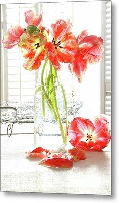 Beautiful Tulips In Old Milk Bottle  Metal Print by Sandra Cunningham
