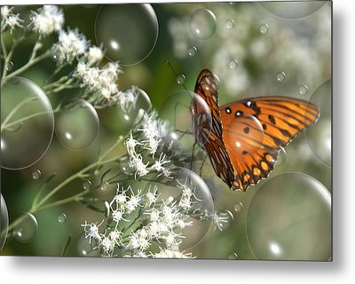 Bubble Fly Metal Print by Steven Richardson