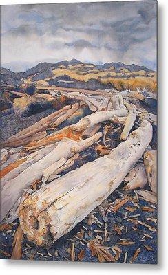 Driftwood Gathering Metal Print by Leslie Redhead