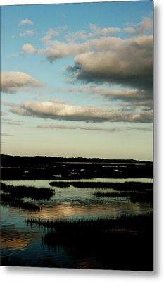 Lowcountry Marsh Front Metal Print by David Paul Murray