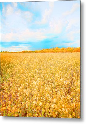 On A Clear Day Metal Print by Bonnie Bruno