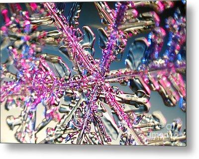 Snowflake Metal Print by Ted Kinsman