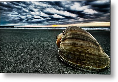Art Of The Sea Metal Print by Calvin Smith