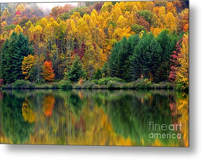 Autumn Big Ditch Lake Metal Print by Thomas R Fletcher