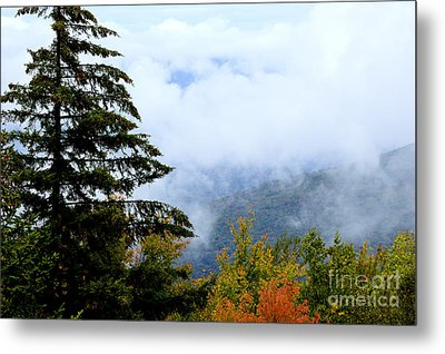 First Day Of Fall Metal Print by Thomas R Fletcher