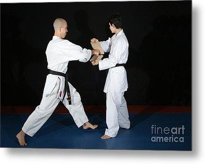 Karate Metal Print
