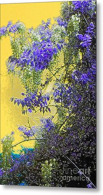 Metal Print featuring the photograph Sun Setting On Wisteria by Holly Martinson