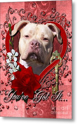 Valentines - Key To My Heart Pitbull Metal Print by Renae Laughner