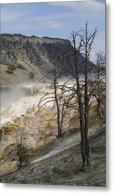 Yellowstone Nat'l Park Metal Print