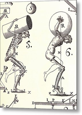 Biomechanics Metal Print by Science Source