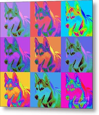 Pop Art Siberian Husky Metal Print by Renae Laughner
