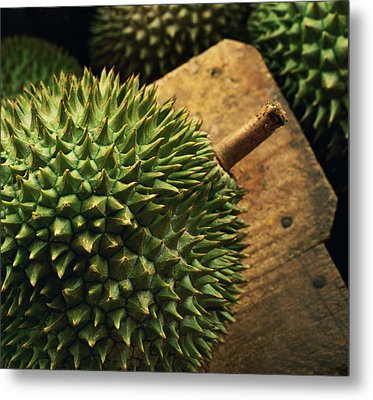 A Durian Fruit - Popular In South East Metal Print by Justin Guariglia